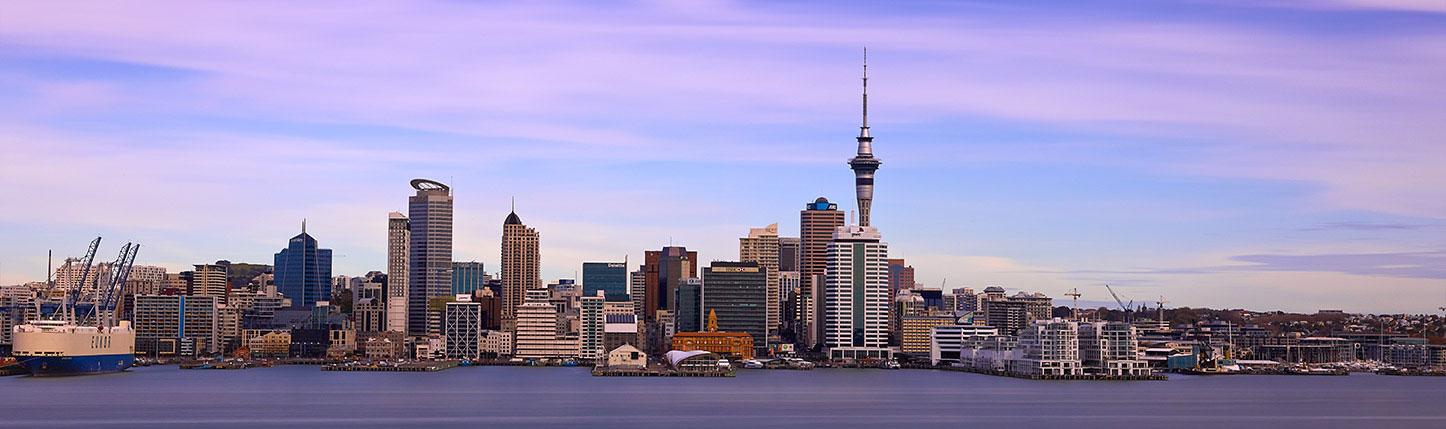 Auckland Handyman
